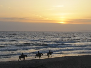 Horseback riders at sunset